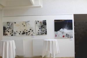 Ausstellung Cornelia Hauch7